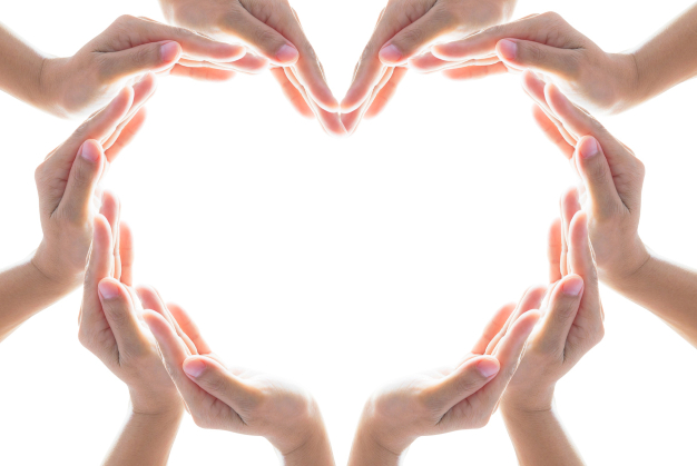 Heart shape woman people's hand collaboration isolated on white background